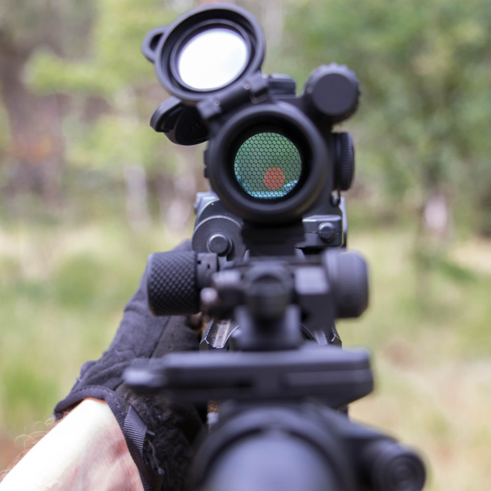 View trough an Aimpoint